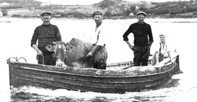 Cowboat