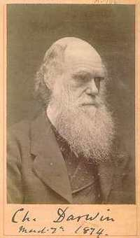 Darwinsignature